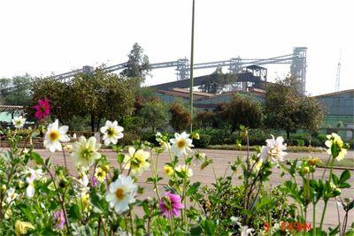 جلسه کمیته طرح جامع زیست محیطی شرکت فولاد خوزستان برگزار شد
